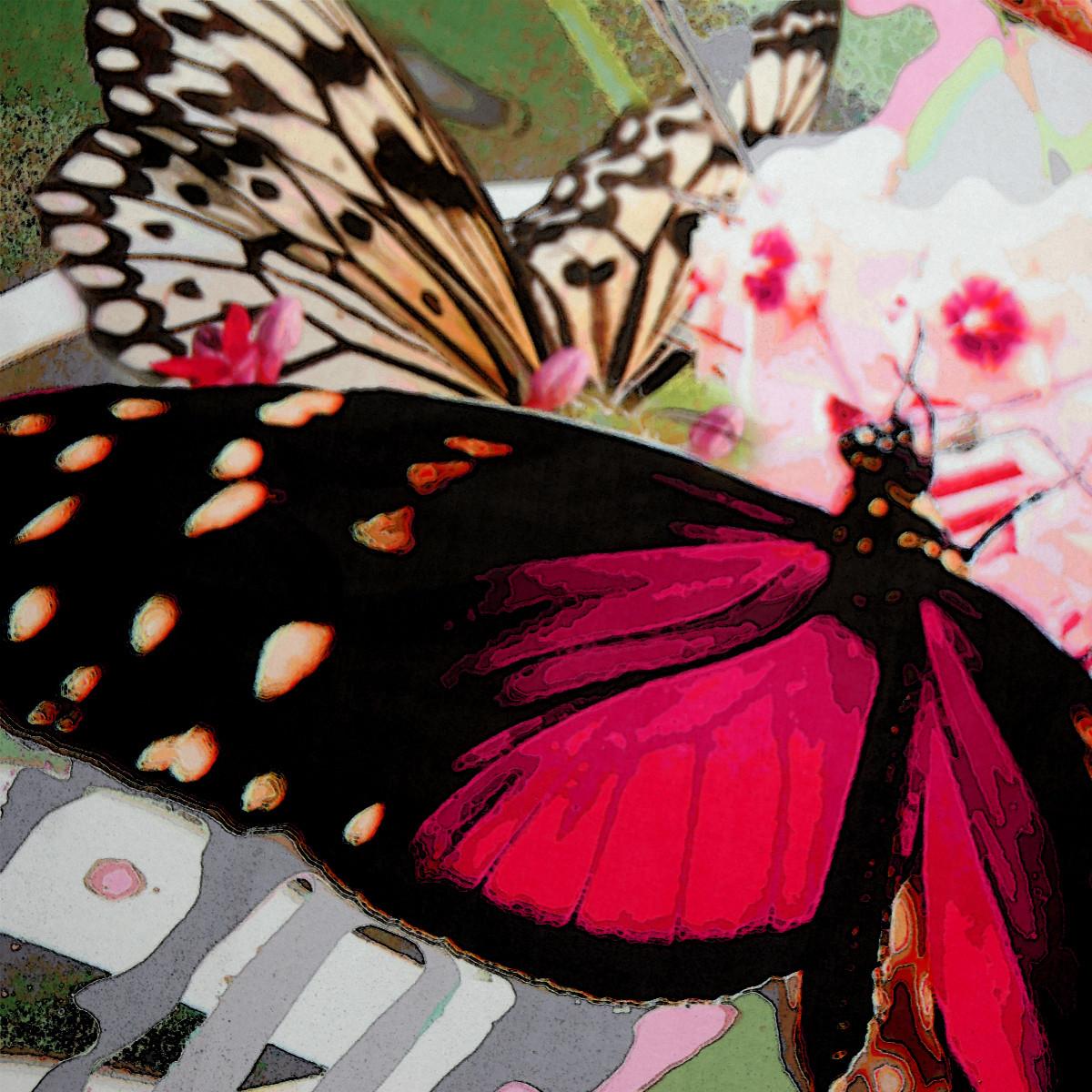 Botania Butterflies